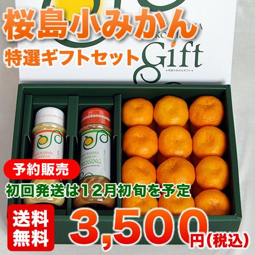 さくらじま旬彩館特選ギフトセット