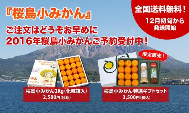 桜島小みかんの通販ならぱくぱく桜島